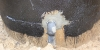 2012-01-10-k6_studnia_az_izolacja_obudowy_zewn