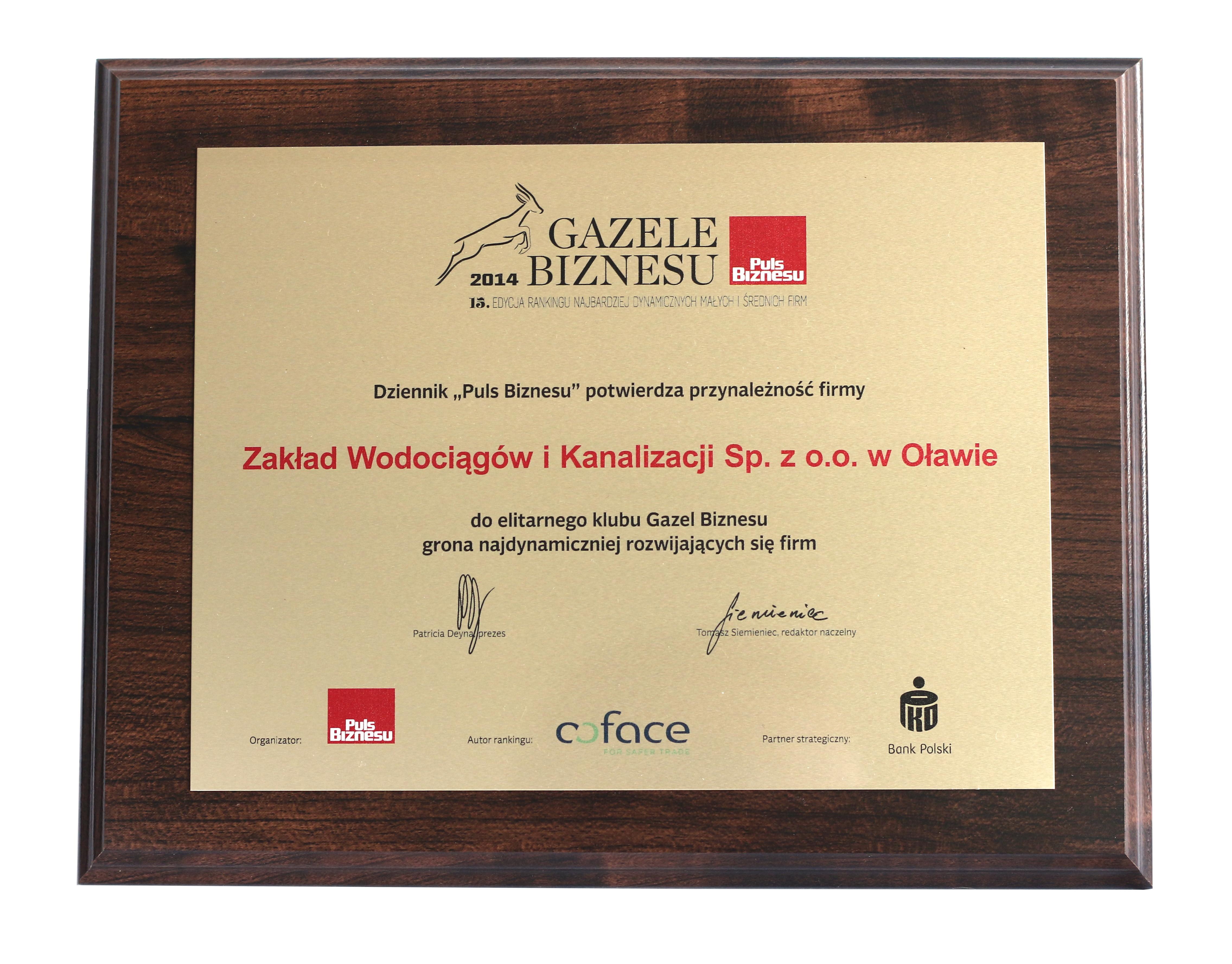 2015.02 Gazele biznesu