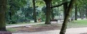3m-miejsce-pod-poidelko-w-parku