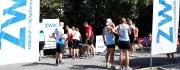 8m-letni-ultramaraton-na-raty-etap-4